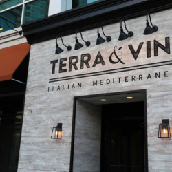 Terra & Vine Photo One